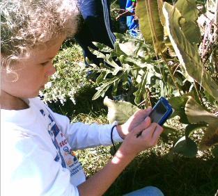picture of a student using a handheld outdoors